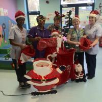 Lewisham and Greenwich NHS trust launches its first trust 'Christmas Toy Appeal'